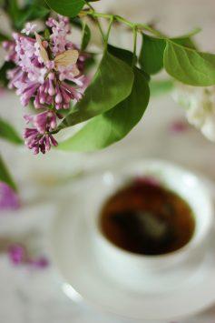 lilacs_vintage_tea_floral_romantic (5)