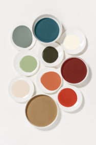 Dulux-Colour-Futures-Colour-of-the-Year-2019-A-place-to-love-Palette-Inspiration-Global-BC-123P