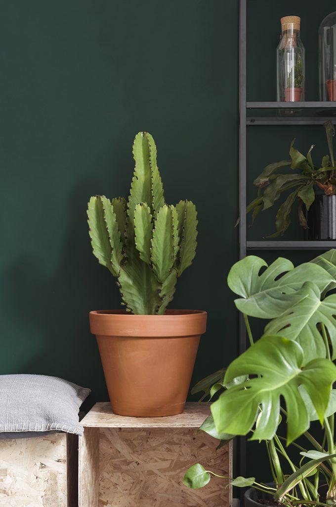 a Creative mess Blog // Flexa Palette A Playful Home