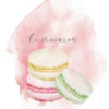 le Macarons Illustration A Creative Mess
