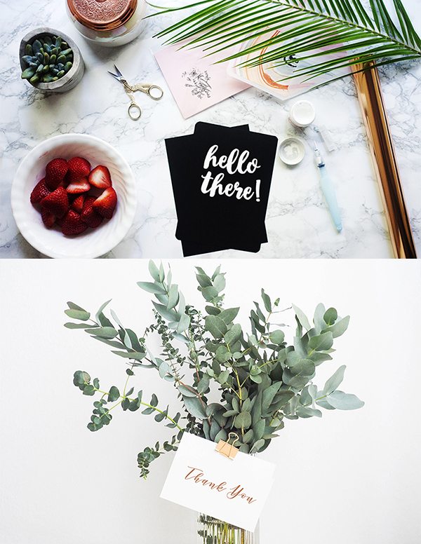 100% free to use for whatever you want stock photography // mockup bundle curated by micheile henderson // a creative mess #stockphotography #freestockphotography #freestockphotos #freemockup